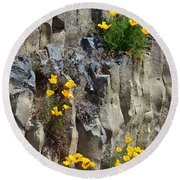 Poppies On The Cliff Round Beach Towel