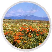 Poppies Over The Mountain Round Beach Towel