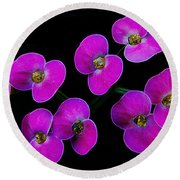 Poppin Pink Petals Round Beach Towel