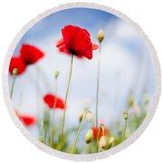Poppy Flowers 06 Round Beach Towel by Nailia Schwarz