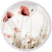 Poppy Flowers 15 Round Beach Towel by Nailia Schwarz