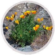 Poppy On The Rocks Round Beach Towel