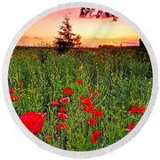 Poppy Patch And Previsualization Round Beach Towel