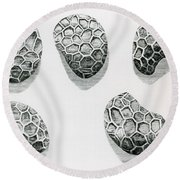 Poppy Seeds Engraving-1665 Round Beach Towel