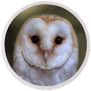 Portrait Of A Barn Owl Round Beach Towel