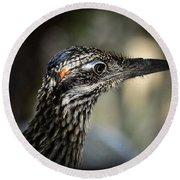 Portrait Of A Roadrunner  Round Beach Towel