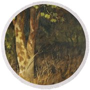 Portrait Of A Tree Trunk Round Beach Towel