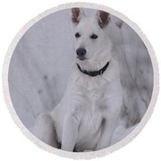 Portrait Of A Young Dog Round Beach Towel