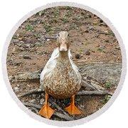 Portrait Of An Alabama Duck Round Beach Towel