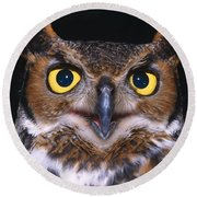 Portrait Of Great Horned Owl Round Beach Towel