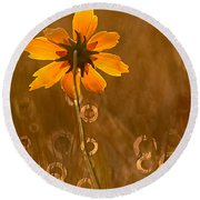 Prairie Coreopsis And Dewdrops Round Beach Towel