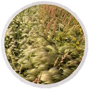 Prairie Crop With Weeds Round Beach Towel