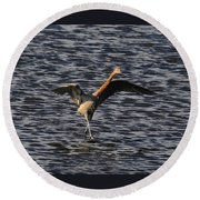 Prancing Heron Round Beach Towel