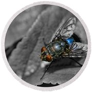 Pretty Fly For A Fly Guy Round Beach Towel