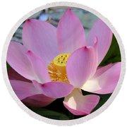 Pretty Pink Lotus Round Beach Towel