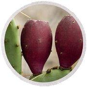 Prickly Pear Cactus Fruit Round Beach Towel