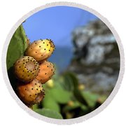 Prickly Pears Round Beach Towel