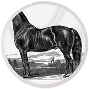 Prize Horse, 1857 Round Beach Towel