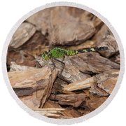 Profile Of Green Dragonfly Round Beach Towel