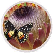 Protea With Speckled Butterfly Round Beach Towel