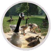 Protective Mad Mama Canadian Goose Round Beach Towel