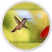 Proud Hummingbird Round Beach Towel