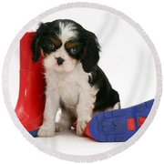 Puppies With A Childs Rain Boots Round Beach Towel