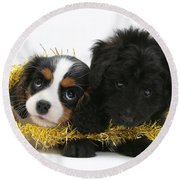 Puppies With Tinsel Round Beach Towel