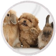 Puppy And Rabbits Round Beach Towel