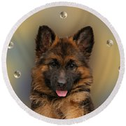 Puppy With Bubbles Round Beach Towel