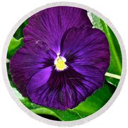 Pure Purple Round Beach Towel