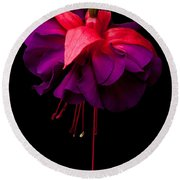 Purple And Pink Beauty Round Beach Towel by Dawn OConnor