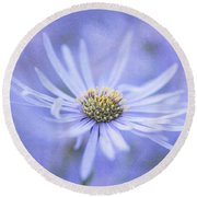 Purple Aster Flower Round Beach Towel