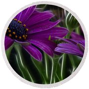 Purple Daisy Round Beach Towel