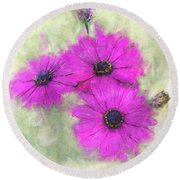 Purple Daisy Trio Watercolor Photoart Round Beach Towel