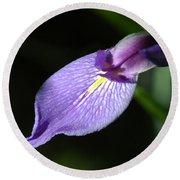 Japanese Iris Petal Round Beach Towel