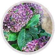 Purple Hydrangeas Round Beach Towel