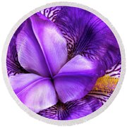 Purple Japanese Iris Round Beach Towel