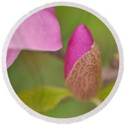 Purple Magnolia Round Beach Towel