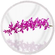 Purple Orchid Bunch Isolated Round Beach Towel