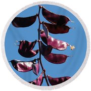 Purple Pods Round Beach Towel