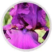 Purple Purity Round Beach Towel