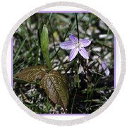 Purple Spring Trail Flower Round Beach Towel