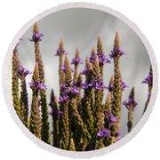 Purple Wildflowers  Round Beach Towel