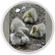 Quadruplets Qp Round Beach Towel