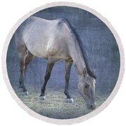 Quarter Horse In Blue Round Beach Towel
