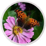 Question Mark Butterfly And Zinnia Flower Round Beach Towel