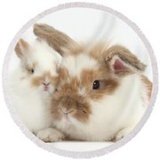 Rabbit And Baby Bunny Round Beach Towel