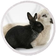 Rabbit And Lamb Round Beach Towel