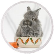 Rabbit In A Food Bowl With Carrot Round Beach Towel